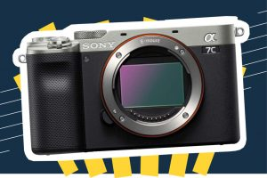 The 8 Best Mirrorless Cameras to Buy in 2021 | SPY