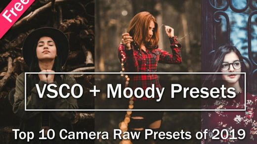 Download Free Top 10 VSCO Camera Raw Presets of 2020   Download Free Top 10  Moody Camera Raw Presets of 2020 - Ash-Vir Creations